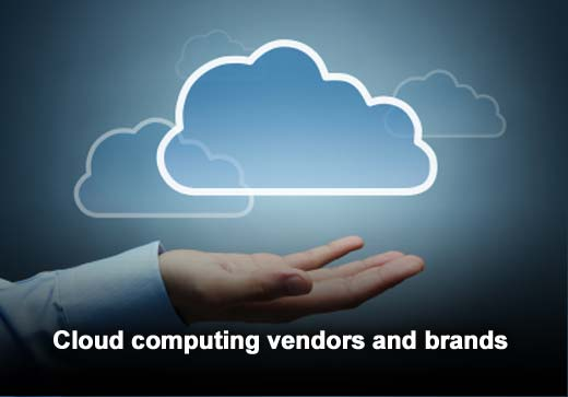 Cloud Adoption Trends Favor Private Cloud Two to One - slide 6