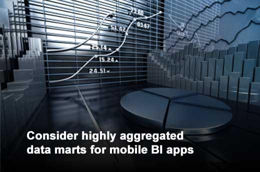 Nine Considerations for Enterprises Establishing a Mobile BI Strategy - slide 5